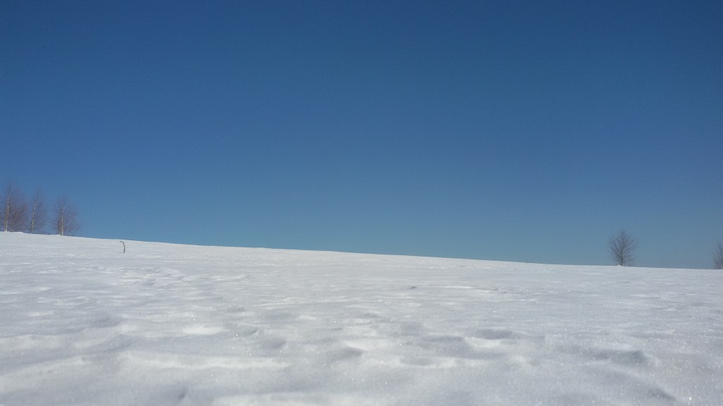 Vlasina,sneg,zima