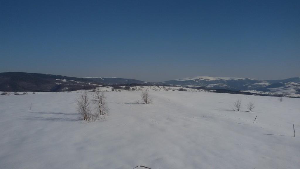 Vlasina_planina_zima