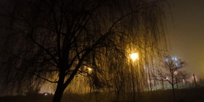 Magla, Prokuplje